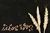 Spikelets and grains of wheat on black wooden background
