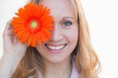 beautiful woman holding orange marguerite