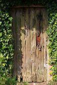 Old door in the garden is closed