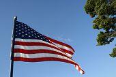 Waving Flag 1