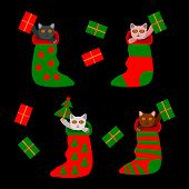 Cute christmas kittens in socks with gifts and tree