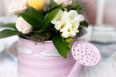 pic of flower pots  - Flower pot  in form of  watering can - JPG