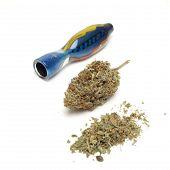 stock photo of cannabis  - marijuana and cannabis bud on a white background - JPG