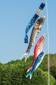 stock photo of japanese flag  - Flags shaped like Japanese Koi fish  - JPG