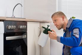 stock photo of pesticide  - Young Worker Spraying Pesticide On Cabinet With Sprayer - JPG
