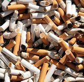 close up shot of dirty cigarettes butts in ashtray