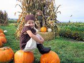 Pumpkin Patch Girl