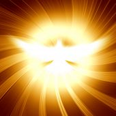 image of pentecostal  - shining dove with rays on a dark golden background - JPG