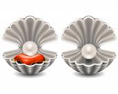 picture of pearl-oyster  - Open seashell with pearl on small pillow - JPG