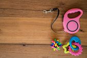 Pet Leashes And Rubber Toy On Wooden Background.  Pet Accessories Concept poster