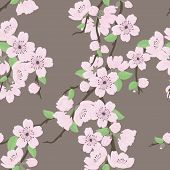 image of cherry-blossom  - Beautiful vector seamless pattern with sakura flowers and leaves - JPG