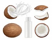Coconut Collection. Fresh Tropical Coco Fruit With Milk Vector Nature Coconuts Realistic Illustratio poster