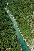 Tara river in Tara canyon, Montenegro poster