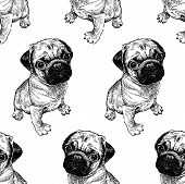 Seamless Pattern With Cute Puppies. Home Pets Isolated On White Background. Sketch. Vector Illustrat poster