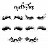 Lashes Lettering Vector Illustration For Beauty Salon, Fashion Blog, Logo, False Eyelashes Extension poster