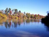 Fall Colors On The Altamaha