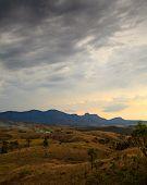 Portrait format rural landscape