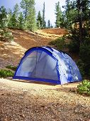 Blue Tent In The Forest