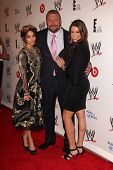 LOS ANGELES - AUG 15:  Vanessa Hudgens, Paul Levesque, Stephanie McMahon at the Superstars for Hope honoring Make-A-Wish at the Beverly Hills Hotel on August 15, 2013 in Beverly Hills, CA