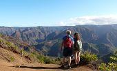 Tourists Overlooking Waimea Canyon. poster