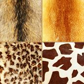great fur set