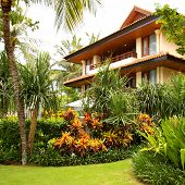 tropical villa with beautiful garden