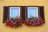 An Old Window With Shutters In T�bingen, Germany