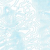 vector topographic map lines