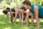 picture of side view people  - Side view of a group of fitness people doing push ups in the park - JPG