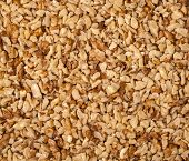 image of fraction  - walnut close up  kernel milled fraction background - JPG
