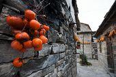 Village - Yue Zhai