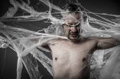 network.man tangled in huge white spider web