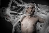 network. man tangled in huge white spider web