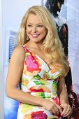 LOS ANGELES - FEB 10: Charlotte Ross at the premiere of Columbia Pictures' 'Robocop' at TCL Chinese