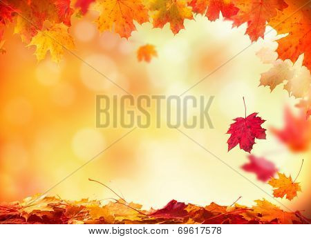 Moody autumn background with falling leaves on wooden planks poster