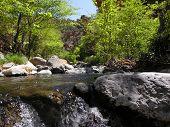 Wet Beaver Creek - Arizona