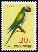 Postage Stamp North Korea 1975 Nicobar Parakeet, Bird