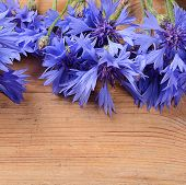The Beautiful Cornflower On Wooden Background