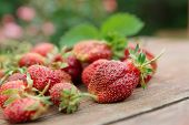 Pile of just gathered strawberries on an old wooden table, close-up