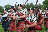 Black Watch Pipes and Drums