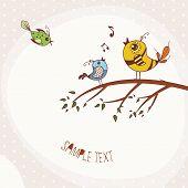 Birds sitting on a tree branch