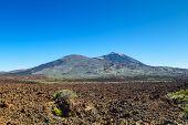 Teide volcano naitional park in sunny day, Tenerife island, Spain.