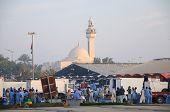 Fish Market In Dubai