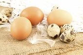 stock photo of quail egg  - Hen and quail eggs on a burlap background