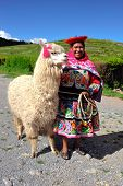 Peruvian Woman In Traditional Dress With Lama.