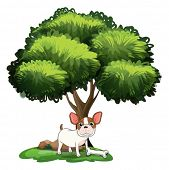 Illustration of a dog standing under the tree