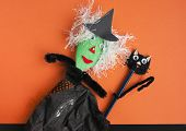 Halloween Toy Witch And Black Cat On Orange