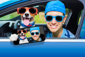 image of driving school  - dog in a car looking through window with Driving instructor taking a selfie - JPG
