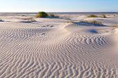 Sand Pattern On Coastal Dune