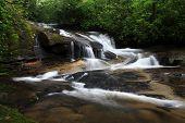 Falls near Cove Creek